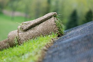 укладка газона на склоне