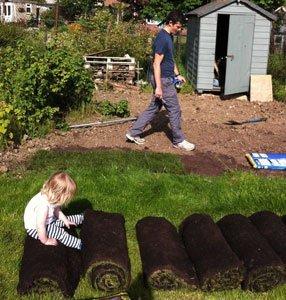 как подготовить участок под газон
