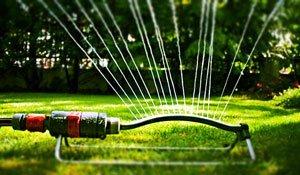 полив рулонного газона