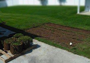 ремонт газона