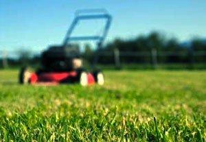 стричь газон