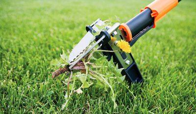 Приспособление для выдергивания сорняка