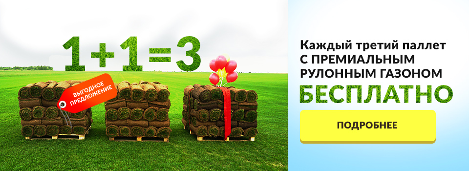 Рулонный газон - бесплатно